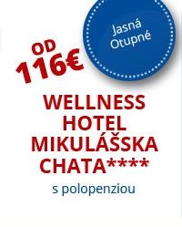 Wellness Hotel Mikulášska Chata****